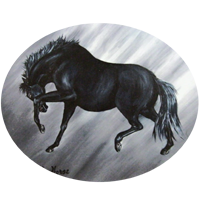 Dark Horse Artistry
